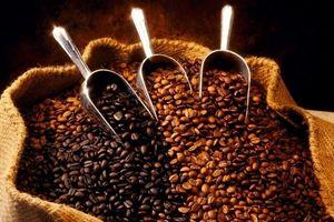 Thị trường cà phê có những biến động trong và ngoài nước