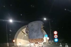 Huế: Thót tim cảnh xe chở keo tràm gần chạm nóc khi qua hầm