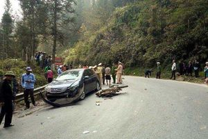 Lào Cai: Lái xe ô tô trong vụ tai nạn bị bắt vạ 400 triệu đồng vô tội