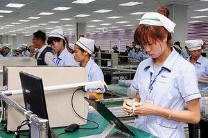 Hà Nội: Nâng cao kiến thức của doanh nghiệp trong hội nhập CPTTP