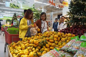 Xây dựng thương hiệu nông sản Việt