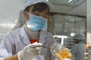Thật - giả 'tiên dược' đông trùng hạ thảo - Bài 3: Tạo dựng thương hiệu 'thần dược made in Việt Nam'