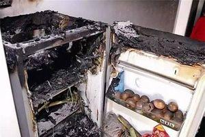Nhận biết dấu hiệu cảnh báo tủ lạnh sắp nổ tung