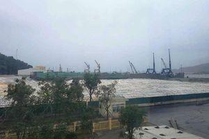 Bắt vụ làm giả nhãn mác hàng ngàn tấn xi măng Long Sơn để xuất khẩu
