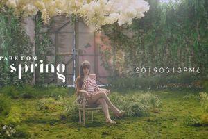 'Highlight Medle' của Park Bom cho album 'Spring': Vocal vẫn rất đỉnh!