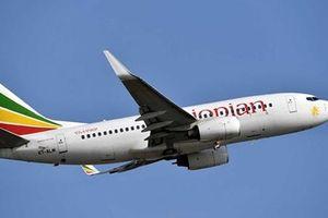Cục Hàng không cấm Boeing 737 MAX vào không phận Việt Nam