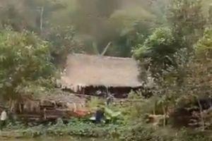 Cùng hai con rể đi săn trong rừng, bố vợ không may trúng đạn tử vong