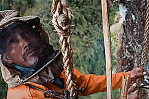 Đu vách núi lấy mật ong 'bất chấp tử thần' ở Nepal