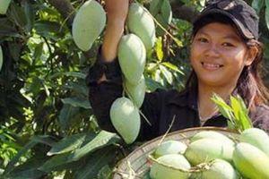 Trái cây Việt Nam 'vật lộn' cả sân nhà và sân khách
