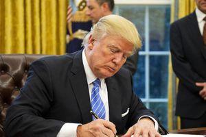 Tổng thống Trump ra sắc lệnh cấm bay khẩn cấp Boeing 737 Max