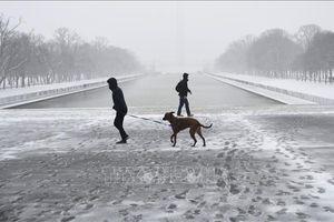 Bão tuyết gây lũ lụt diện rộng, nhiều bang của Mỹ khốn đốn