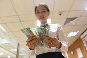 Doanh nghiệp tài chính - ngân hàng 'áp đảo' về tăng trưởng lợi nhuận trên sàn HNX