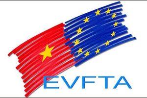 EuroCham rất muốn đẩy nhanh quá trình phê chuẩn EVFTA
