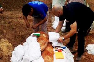 Chặn quốc lộ 1A 30 phút để tháo ngòi nổ quả bom 'khủng' ở Quảng Bình