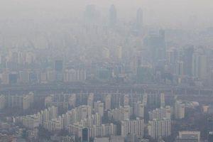 Hàn Quốc ô nhiễm nghiêm trọng, LG ủng hộ 10.000 máy lọc không khí cho trường học
