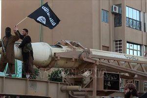 Pháp tiếp nhận trẻ mồ côi là con của các phần tử thánh chiến tại Syria