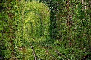 15 bức ảnh tuyệt đẹp chứng tỏ sức mạnh của thiên nhiên