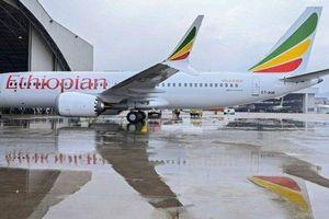 Boeing dừng giao máy bay 737 MAX sau tai nạn chết nhiều người tại Ethiopia