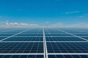 Tổ hợp 3 nhà máy điện mặt trời lớn nhất Việt Nam chuẩn bị được đưa vào vận hành