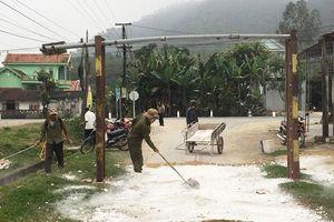 Phát hiện ổ dịch tả lợn Châu Phi thứ hai ở Nghệ An