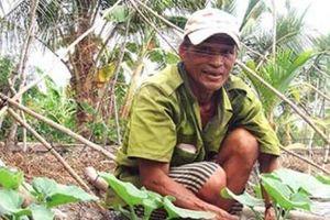 Nuôi cá, trồng cây ăn quả trên đất lúa, xung đột lợi ích