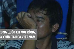 Ngư dân rớm nước mắt kể chuyện bị Trung Quốc xịt vòi rồng, gây chìm tàu