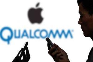 Apple bị phạt tới 31 triệu USD vì vi phạm bản quyền công nghệ