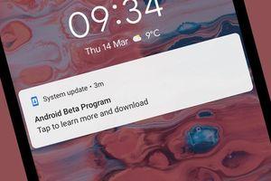 12 tính năng mới cần biết trên Android Q Beta