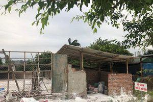 Long Biên – Hà Nội: Năm 2020 không còn cơ sở chăn nuôi thương mại trong khu dân cư