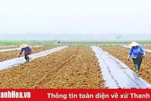 Vai trò của khoa học và công nghệ trong phát triển nông nghiệp, xây dựng nông thôn mới ở huyện Nga Sơn