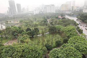 Dân phản đối xén công viên làm bãi đỗ xe ngầm
