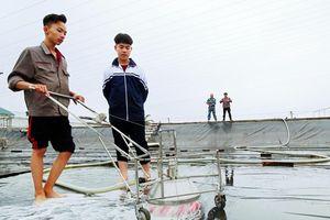 Quảng Ninh: Khen thưởng 2 học sinh đoạt giải nhất cuộc thi KHKT quốc gia