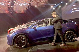 Cổ phiếu Tesla giảm khi mẫu xe mới Model Y không gây ấn tượng