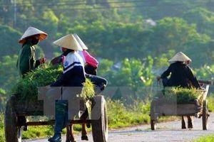Thừa Thiên - Huế dự kiến huy động hơn 7.000 tỷ đồng xây dựng nông thôn mới