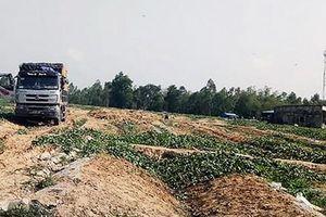 Chặn xe ép người mua dưa trả nợ vay với lãi suất cao cho người trồng