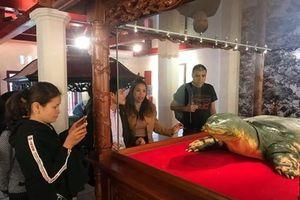 Trưng bày mẫu vật rùa Hồ Gươm