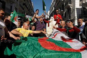 Algeria: Biểu tình quy mô lớn đòi tổng thống 82 tuổi từ chức
