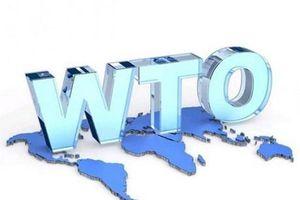 ASEAN cần phục hồi hệ thống đa phương của WTO về giải quyết tranh chấp
