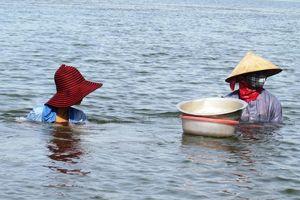 Quảng Bình: Sông Loan, núi Phượng một vùng văn hóa dân gian