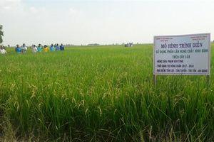 FMP Ninh Bình liên tiếp 'chinh phục' nhiều thị trường khó tính