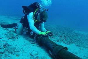 Lùi thời gian bảo trì tuyến cáp quang biển IA