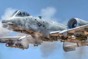Sự thực cường kích A-10 Thunderbolt II 'bắn hạ' tiêm kích tàng hình F-22 Raptor