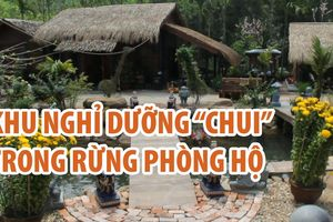 Tháo dỡ khu nghỉ dưỡng 'chui' trong rừng phòng hộ ở Quảng Nam