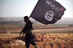 'Người phát ngôn' IS kêu gọi người Hồi giáo trả đũa vụ khủng bố Christchurch