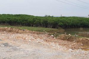 Hồi âm bài: 'Thanh Hóa 'Ngang nhiên' cấp phép xây dựng nhà ở vào khu quy hoạch trồng cây xanh: UBND huyện Tĩnh Gia thu hồi giấy phép xây dựng