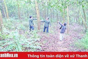 Thu tiền dịch vụ môi trường rừng đạt 76 tỷ đồng