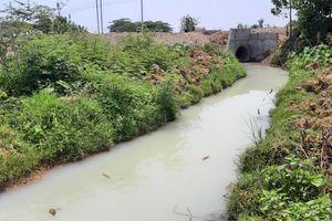 Hàng ngàn m3 nước vàng đục, bốc mùi thuốc sâu đổ ra sông ở Đà Nẵng