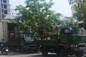 Xe cảnh sát vi phạm luật giao thông: 'Sẽ lập biên bản phạt nguội'