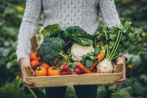 Vitamin và khoáng chất: Từ lầm tưởng đến tác dụng diệu kỳ tới sức khỏe