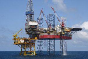 PVN lên tiếng về 'tiền hoa hồng' ở các hợp đồng dầu khí